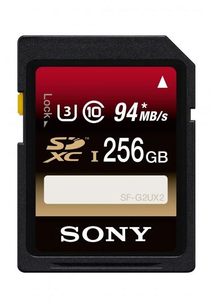 Sony 256 GB memory card